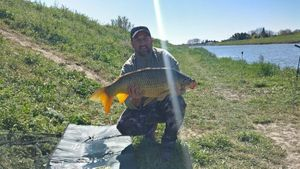Common Carp — Tim Sauzet