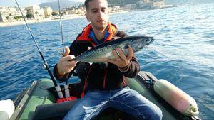 Skipjack Tuna — Mehdi Ben
