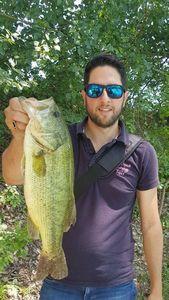 Largemouth Bass — Anthony Deloupe