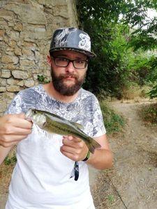Largemouth Bass — Yohan Van Drom