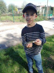European Perch — Timeo Leroy