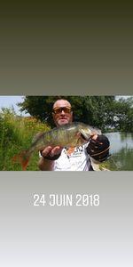European Perch — Stéphane Konnert