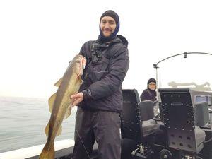 Lieu Jaune — Fishing For You Gaëtan