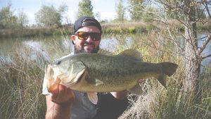 Largemouth Bass — Aminiakk Fishing