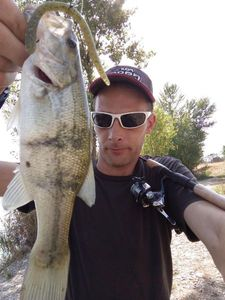 Largemouth Bass — Momo fishing