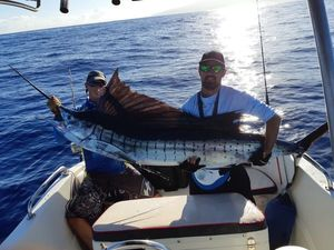 Pacific Sailfish — Julien guerra ti-kaz-peche