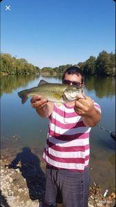 Largemouth Bass — Eli Levy