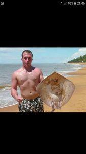 Common Stingray — Julien Clade