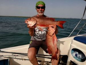 African Red Snapper — Marc ROBAUT