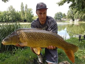 Common Carp — Mathieu  Fillaud
