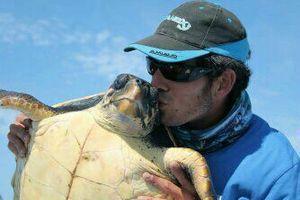 tortue caouane — Samuel Elgrishi Moniteur et Guide de pêche