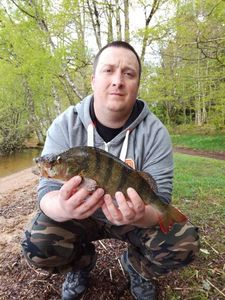 European Perch — Julien Boury