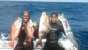Mutton Snapper — John Lopez