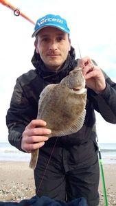 European Flounder — Nicolas Francoise