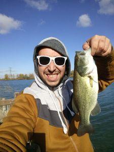 Largemouth Bass — Cedric RT