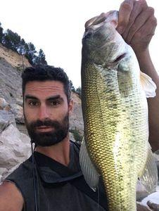 Largemouth Bass — mathieu pêcheur-cueilleur