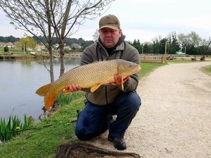 Common Carp — Emmanuel Devolder