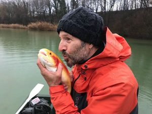Lake Trout — Philippe Attias
