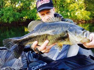 Largemouth Bass — Romano Dyga