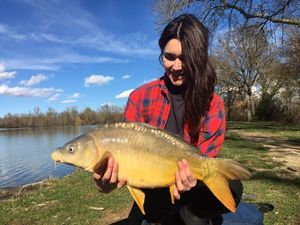 Mirror Carp — Laurie Clauzade