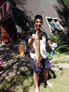 Northern Pike — Antoine fishing