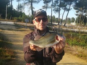 Smallmouth Bass — Cyril Irtan