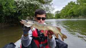 Northern Pike — Sullyvan Dvn