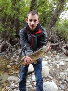 Northern Pike — Benjamin Alves Casal