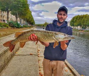 Northern Pike — Hakken Fishing