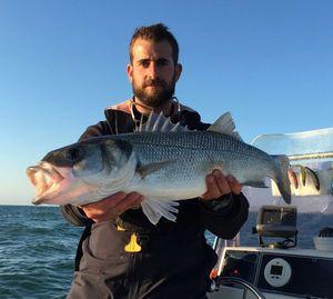 European Bass — Vincent Sibilaud