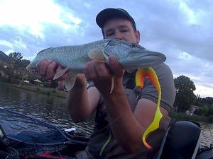 Northern Pike — Fabrice Ftx