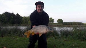 Common Carp — Corentin Mathieu