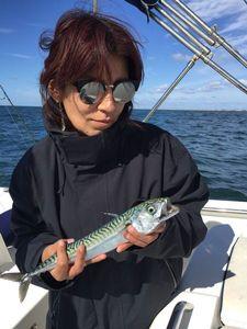 Mackerel — Nzé Jeremy Guide de pêche