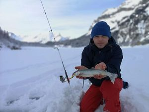 Arctic Char — GE Fish