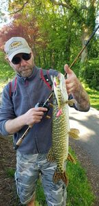Northern Pike — Francois Taupe