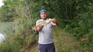 Largemouth Bass — Alex Guisnet