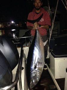 Bluefin Tuna — Cedric Charpentier