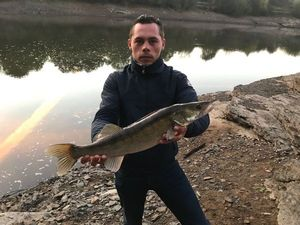 Zander — barloup fishing
