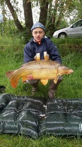 Common Carp — Benoit Ferrand