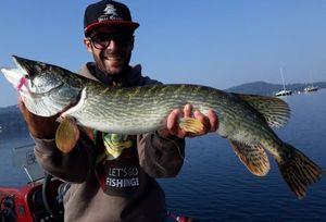 Northern Pike — Eugenio Boggio Marzet
