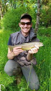 Brown Trout — Jeremy  Malingrey