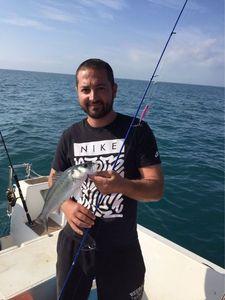 European Bass — Gilles  Saulian