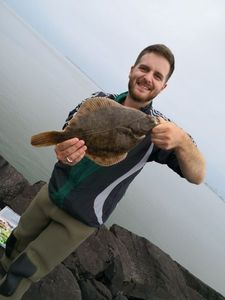 European Plaice — Maxime Duval