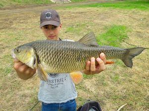 Chub — Dylan fishing