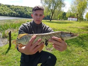 Northern Pike — Quentin Apparailly