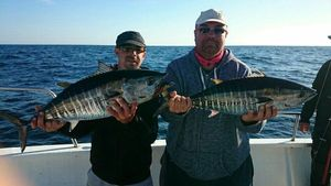Bluefin Tuna — Jerome Flot