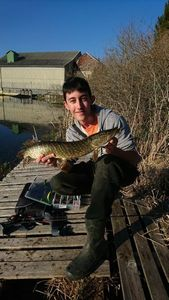 Northern Pike — Maxime Eustache