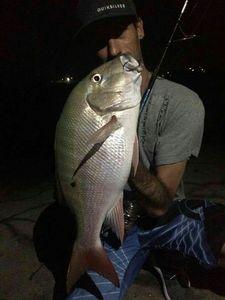 Vivaneau à Tâche Noire — Guillaume Martinez moniteur guide de pêche