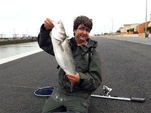 European Bass — Benoit Abiad