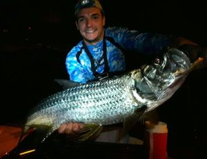 Tarpon — Billy Bass